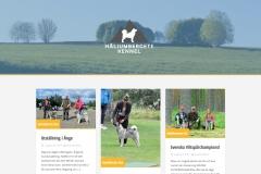 Startsida webbplats Häljumbergets Kennel